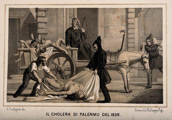 Storia del colera